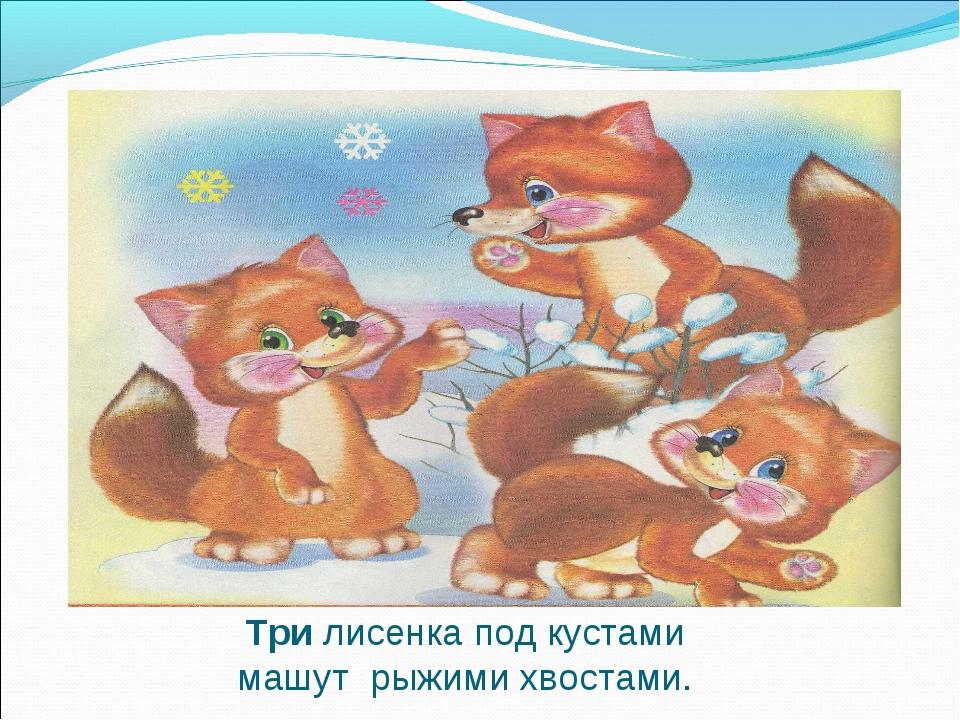 Три лисенка под кустами машут рыжими хвостами.