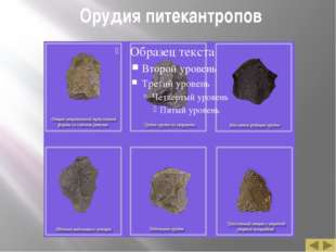 Орудия питекантропов