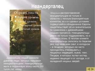 Неандерталец Древнейших людей сменили древние люди, которых называют неандерт