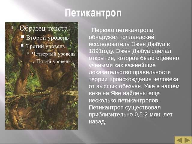 Петикантроп Первого петикантропа обнаружил голландский исследователь Эжен Дюб...