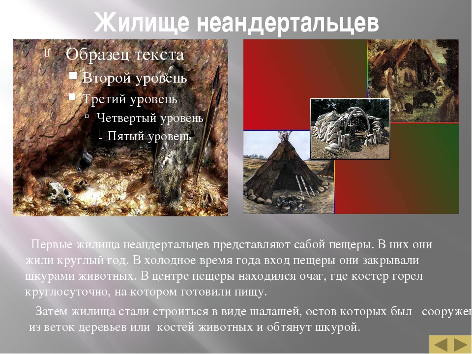 Жилище неандертальцев Первые жилища неандертальцев представляют сабой пещеры....