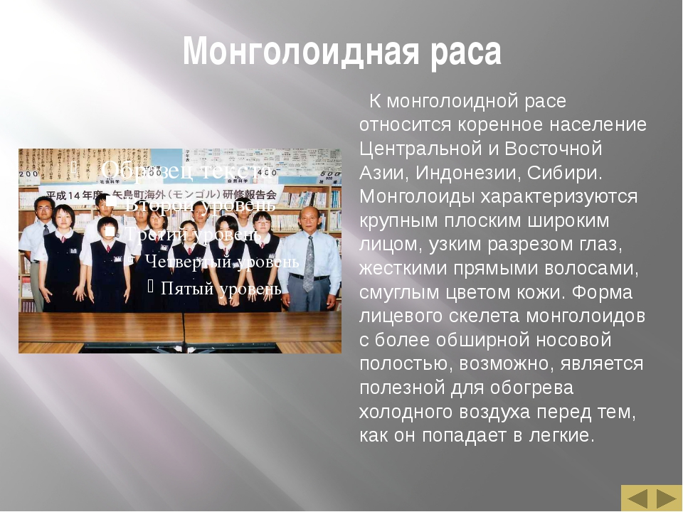 Монголоидная раса К монголоидной расе относится коренное население Центральн...