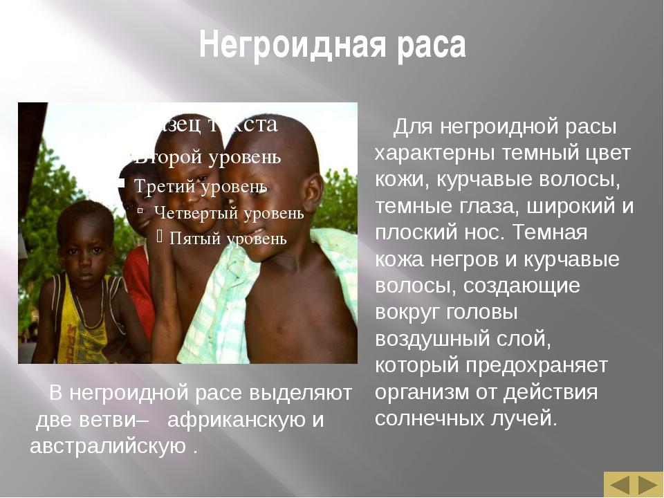 Негроидная раса Для негроидной расы характерны темный цвет кожи, курчавые вол...