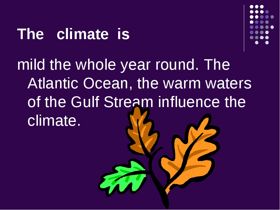 The climate is mild the whole year round. The Atlantic Ocean, the warm waters...