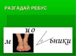 РАЗГАДАЙ РЕБУС