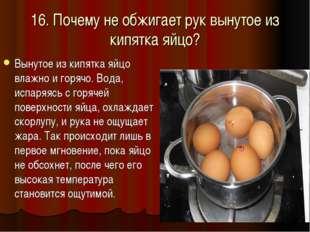 16. Почему не обжигает рук вынутое из кипятка яйцо? Вынутое из кипятка яйцо в