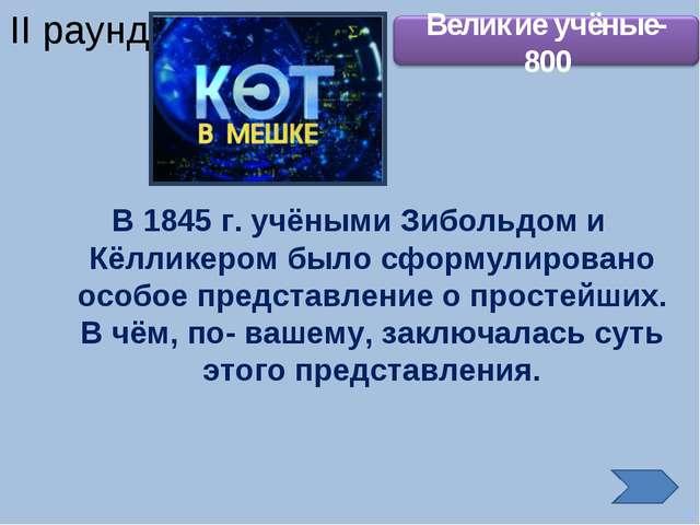 В 1845 г. учёными Зибольдом и Кёлликером было сформулировано особое представл...