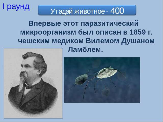 I раунд Впервые этот паразитический микроорганизм был описан в 1859 г. чешски...