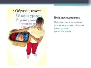 Цель исследования: Изучить, как в домашних условиях удалить с одежды пятна ра