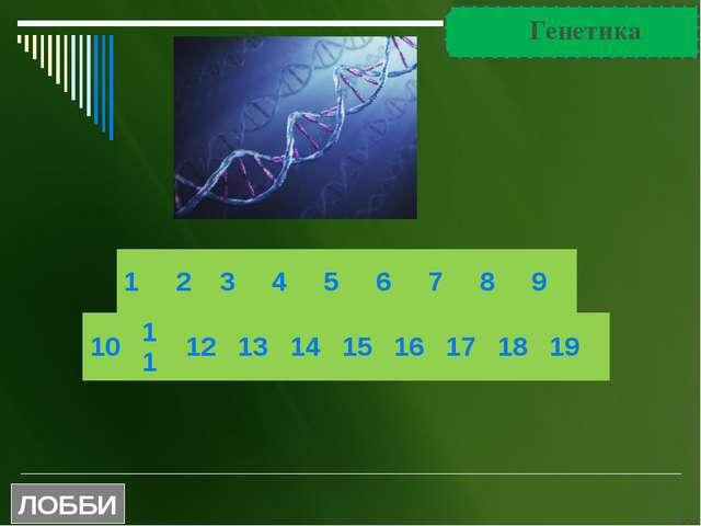 Вопрос Число попыток классификации химических элементов до Д.И. Менделеева до...