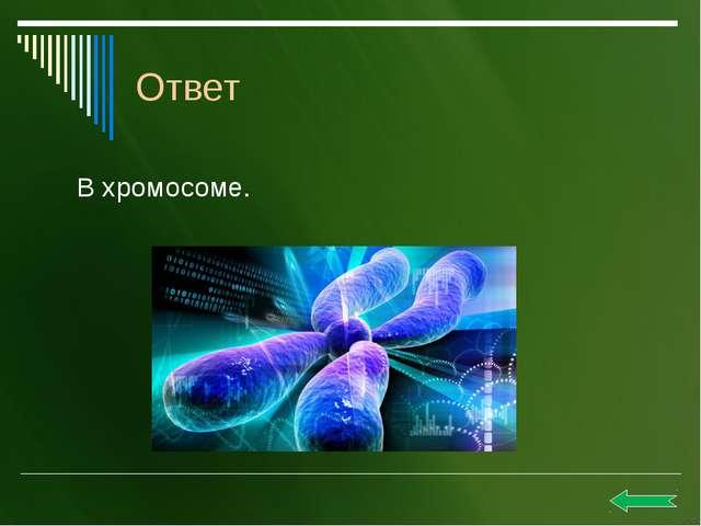 Д.И.Ивановский в 1892 году открыл вирусы. Ответ
