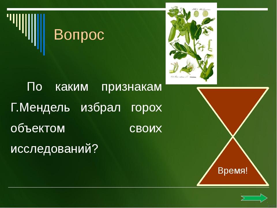 Капсид обеспечивает прикрепление вируса. Защищает от действия ферментов, разр...