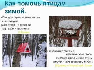 Как помочь птицам зимой. «Голодом страшна зима птицам, а не холодом. Сыта пта