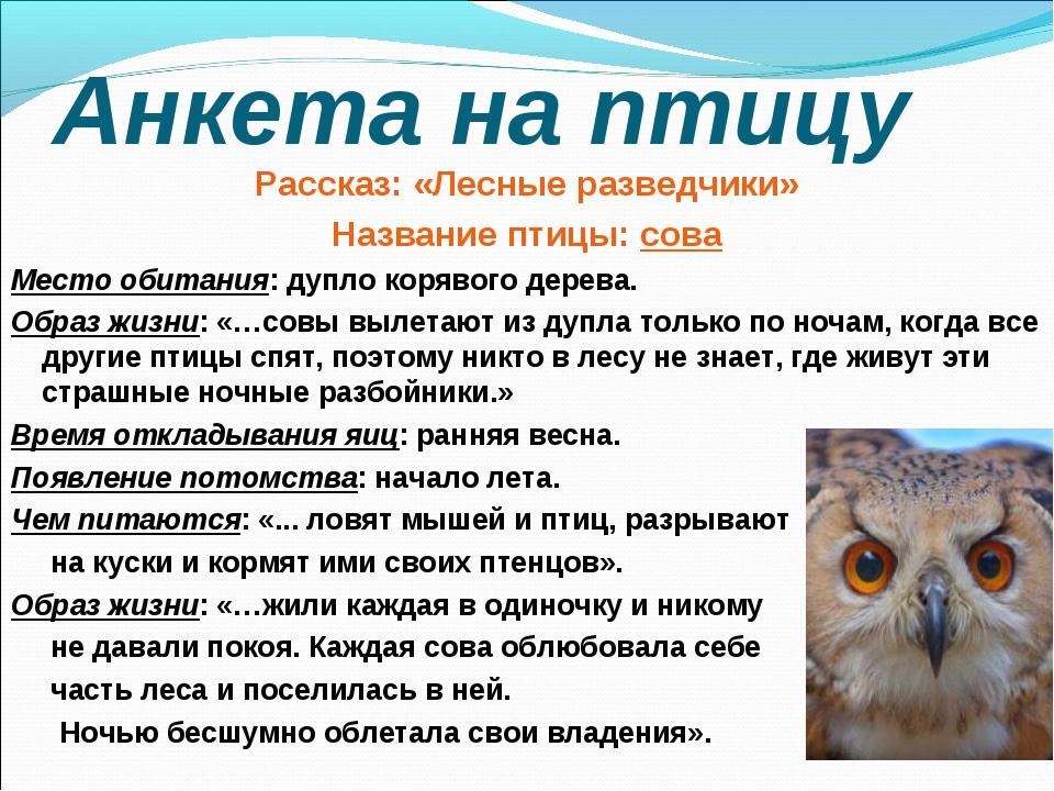 Анкета на птицу Рассказ: «Лесные разведчики» Название птицы: сова Место обита...