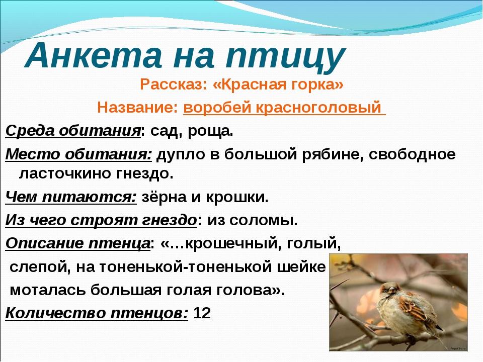 Анкета на птицу Рассказ: «Красная горка» Название: воробей красноголовый Сред...