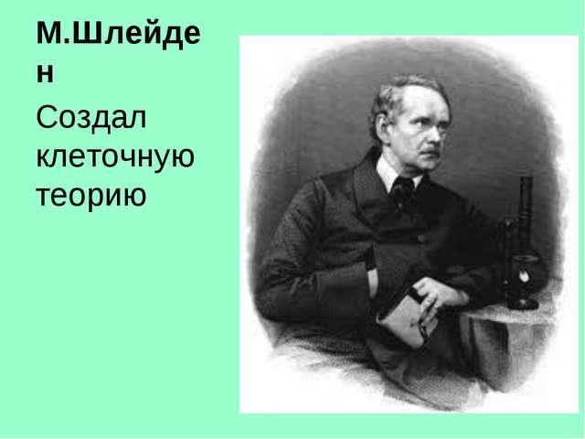 М.Шлейден Создал клеточную теорию
