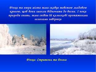 Річки та озера міста зима сковує товстою льодовою кригою, щоб вони змогли ві