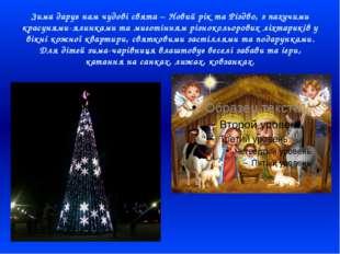 Зима дарує нам чудові свята – Новий рік та Різдво, з пахучими красунями-ялинк