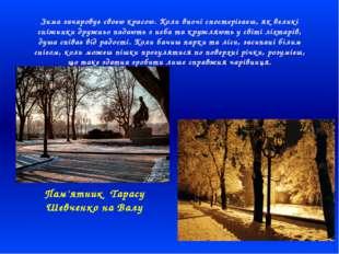 Зима зачаровує своєю красою. Коли вночі спостерігаєш, як великі сніжинки друж