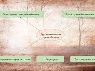 Другие компоненты среды обитания Естественные тела среды обитания Гидросреда