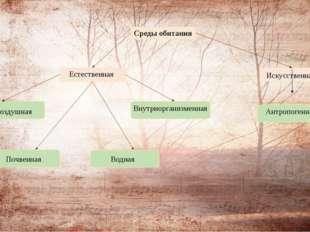 Внутриорганизменная Среды обитания Естественная Искусственная Наземно -возду