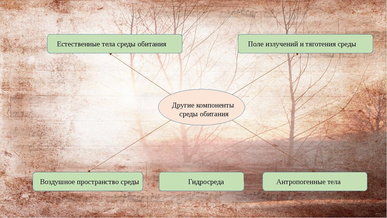 Другие компоненты среды обитания Естественные тела среды обитания Гидросреда...