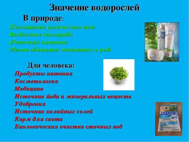 Значение водорослей В природе: Поглощение углекислого газа Выделение кислород...