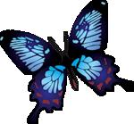 бабочки, рисованные, формат png