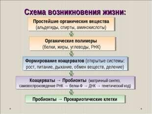 Схема возникновения жизни: Пробионты → Прокариотические клетки Простейшие орг