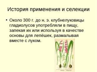 История применения и селекции Около 300 г. до н. э. клубнелуковицы гладиолусо