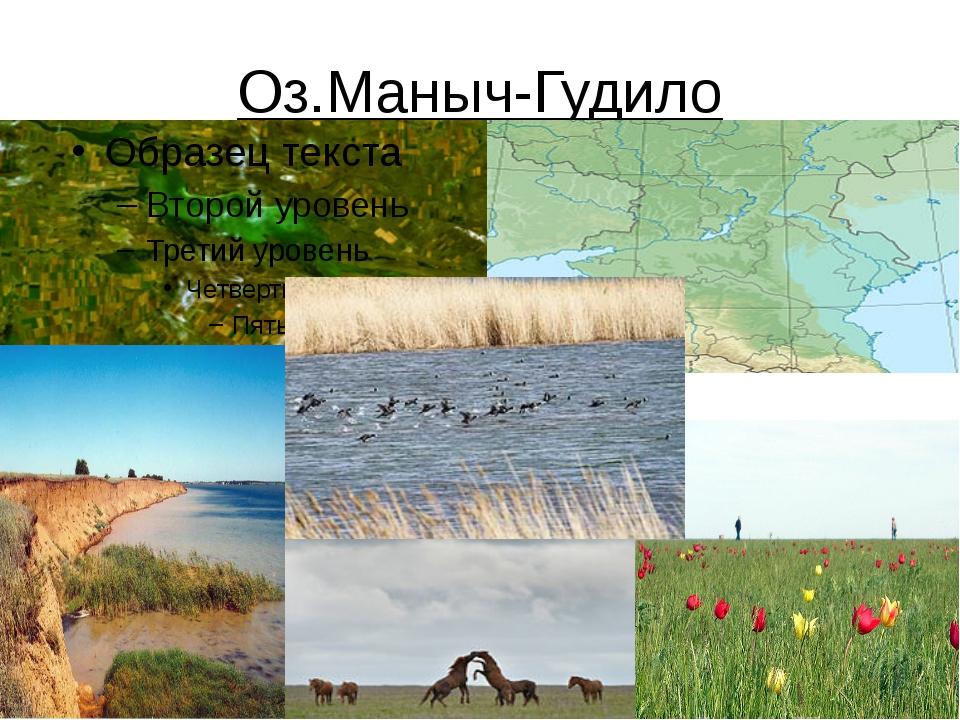 Оз.Маныч-Гудило