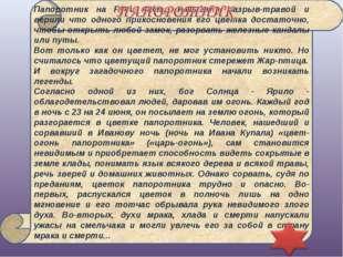 Папоротник на Руси часто называли разрыв-травой и верили что одного прикоснов