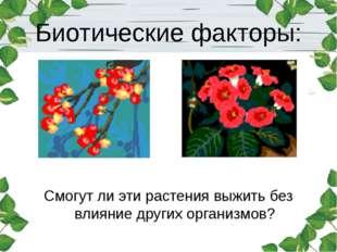 Биотические факторы: Смогут ли эти растения выжить без влияние других организ