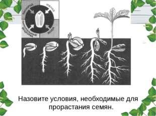 Назовите условия, необходимые для прорастания семян.