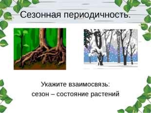Сезонная периодичность. Укажите взаимосвязь: сезон – состояние растений