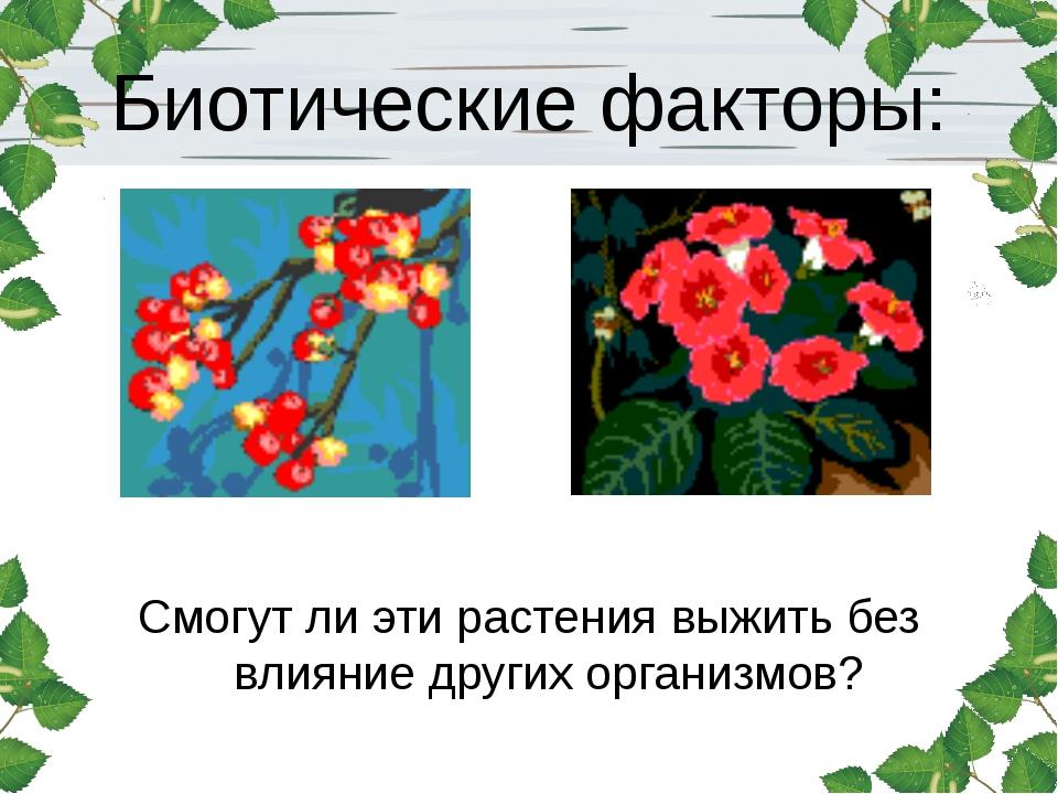 Биотические факторы: Смогут ли эти растения выжить без влияние других организ...