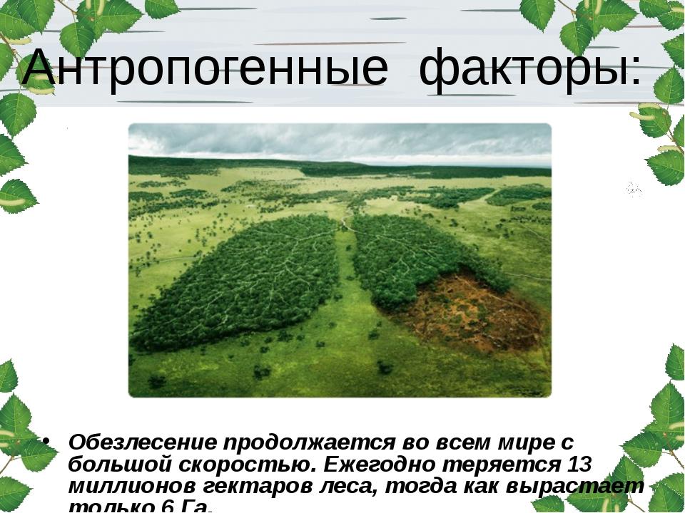 Антропогенные факторы: Обезлесение продолжается во всем мире с большой скорос...