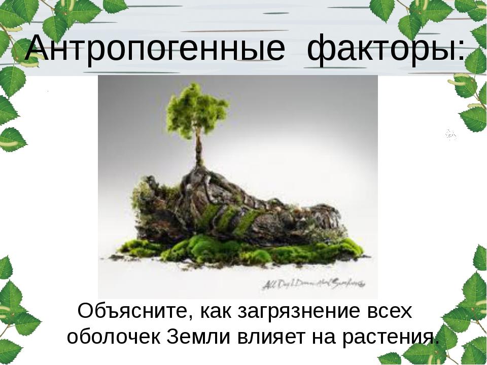 Антропогенные факторы: Объясните, как загрязнение всех оболочек Земли влияет...