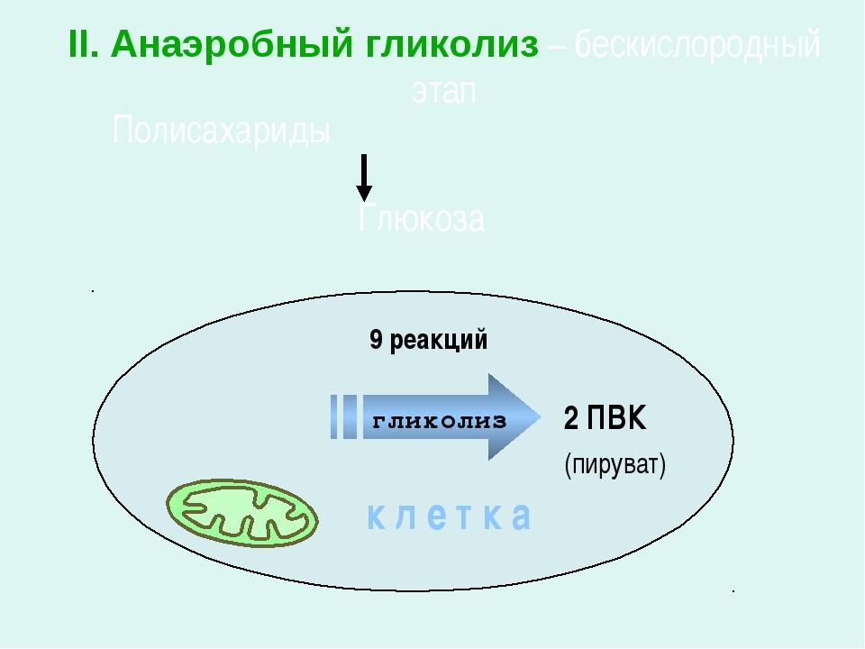Глюкоза Полисахариды 2 ПВК II. Анаэробный гликолиз – бескислородный этап к л...