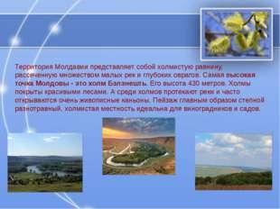 Территория Молдавии представляет собой холмистую равнину, рассеченную множест