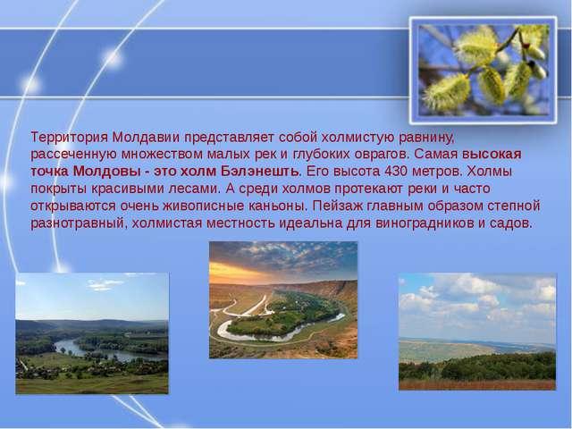 Территория Молдавии представляет собой холмистую равнину, рассеченную множест...