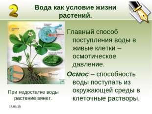 * Вода как условие жизни растений. Главный способ поступления воды в живые кл