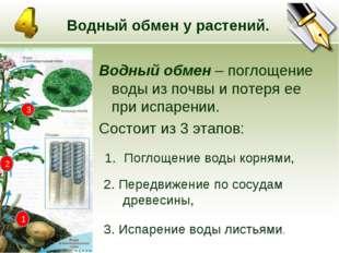 * Водный обмен у растений. Водный обмен – поглощение воды из почвы и потеря е