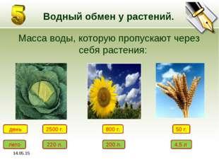 * Водный обмен у растений. Масса воды, которую пропускают через себя растения