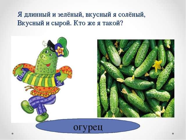 огурец Я длинный и зелёный, вкусный я солёный, Вкусный и сырой. Кто же я такой?