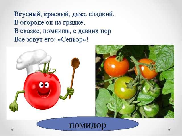 Вкусный, красный, даже сладкий. В огороде он на грядке, В сказке, помнишь, с...