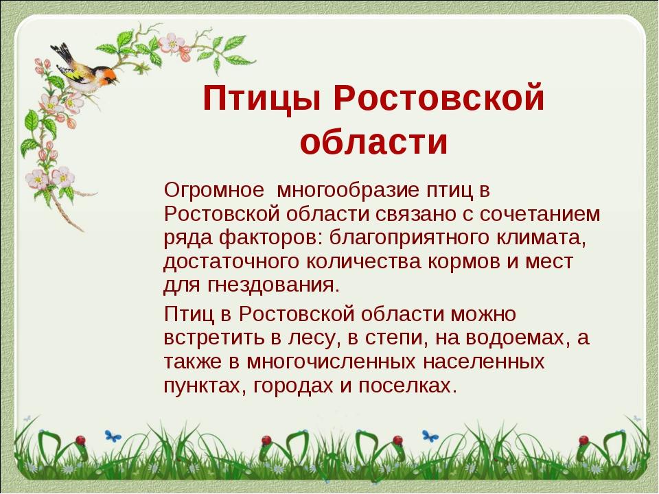 Птицы Ростовской области Огромное многообразие птиц в Ростовской области свя...