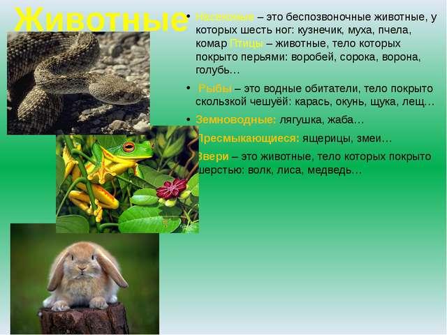 Животные Насекомые – это беспозвоночные животные, у которых шесть ног: кузнеч...