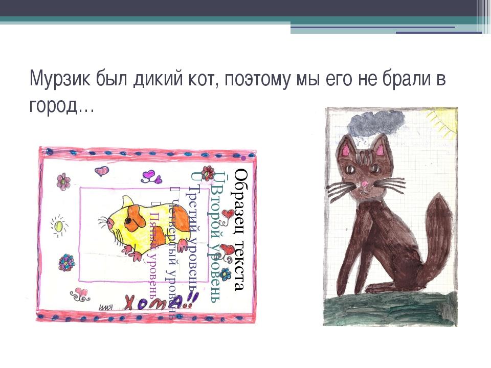 Мурзик был дикий кот, поэтому мы его не брали в город…