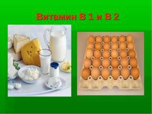 Витамин В 1 и В 2